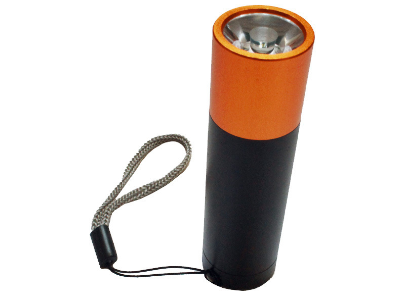 30 LUMEN LED TASCHENLAMPE IN BATTERIE OPTIK HANDLICH